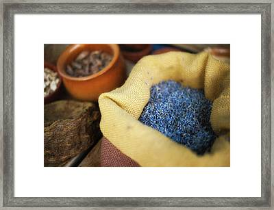 Dried Lavender Framed Print by Alexandre Fundone