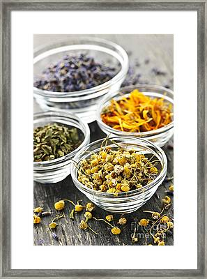 Dried Medicinal Herbs Framed Print