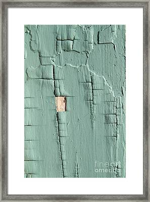 Dried Paint Texture Framed Print by Photo Researchers, Inc.