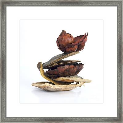 Dried Pieces Of Vegetables Framed Print by Bernard Jaubert