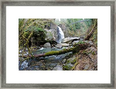 Drift Creek Falls Framed Print