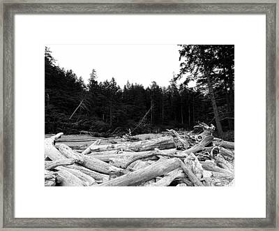 Driftwood 2 Framed Print by Tanya  Searcy