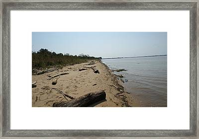 Framed Print featuring the photograph Driftwood by Charles Kraus