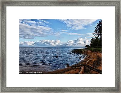Framed Print featuring the photograph Driftwood Crossed by Rachel Cohen
