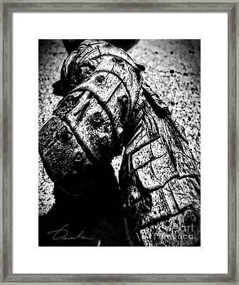 Driftwood Framed Print by Danuta Bennett