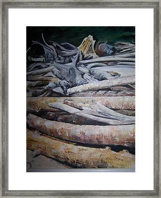 Driftwood Framed Print by Joyce Reid