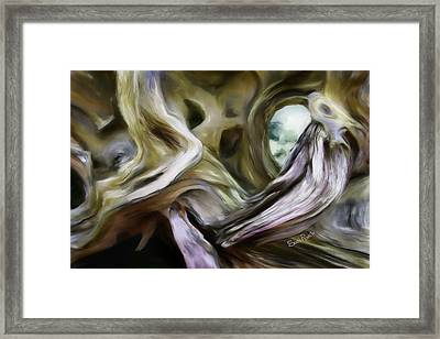 Driftwood Window Framed Print
