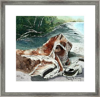 Driftwood-wisconsin Point Framed Print