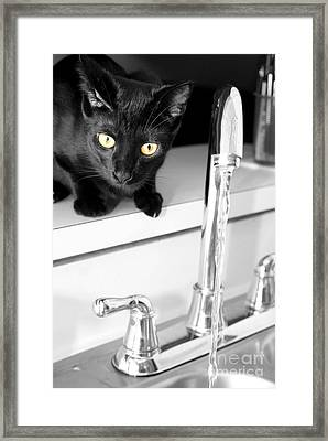 Drinking Problem Framed Print by Jack Norton
