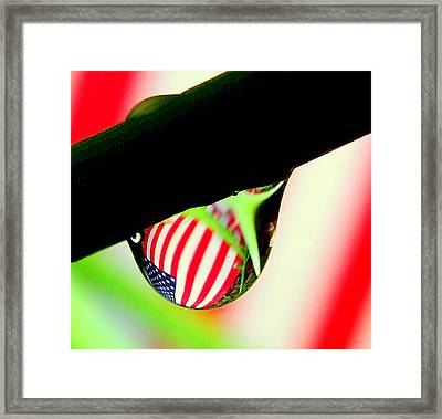 Drip Of America  Framed Print