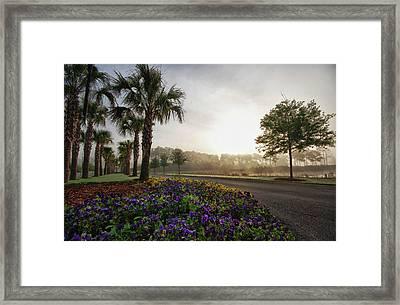 Driveway Colors Framed Print
