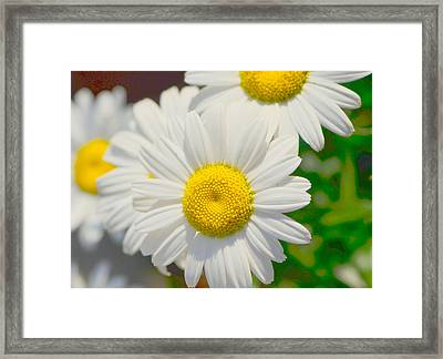 Framed Print featuring the photograph Driving Miss Daisy.... by Tanya Tanski