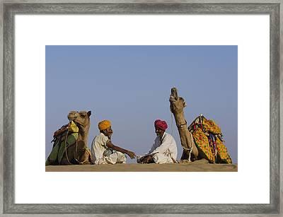 Dromedary Camelus Dromedaries Pair Framed Print by Pete Oxford