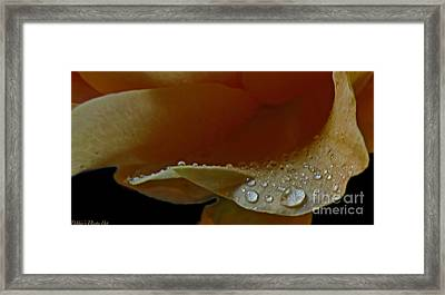 Framed Print featuring the photograph Drops Of Light by Debbie Portwood