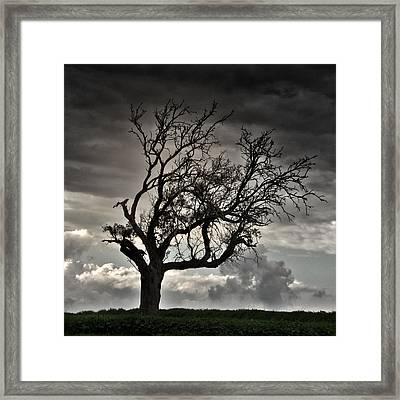 Dry Sunset Framed Print by Stelios Kleanthous