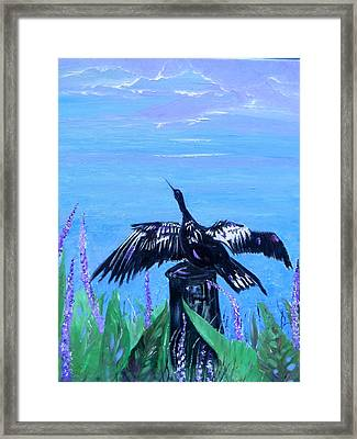 Drying Feathers Framed Print by Christy Usilton