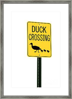 Duck Crossing Sign Framed Print by Blink Images