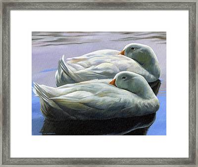 Duck Nap Framed Print