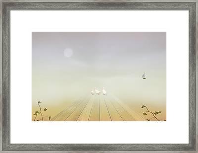 Ducks On The Dock Framed Print by Tom York Images