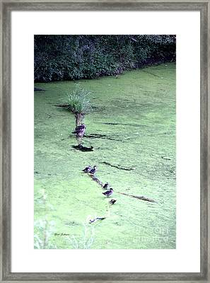 Ducks On The Log Framed Print by Yumi Johnson
