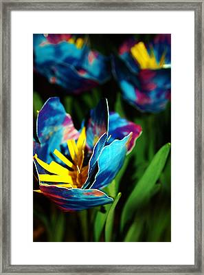 Ducktape Poppies In Blue Framed Print
