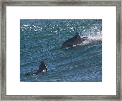Dude Framed Print by Peggy Zachariou