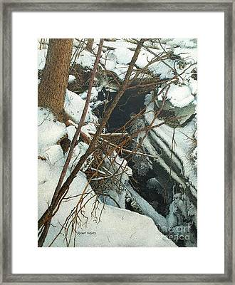 Duffins Creek Framed Print