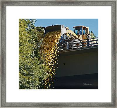Dumping The Ducks Framed Print