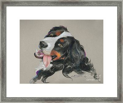 Duncan Framed Print by Mary Machare