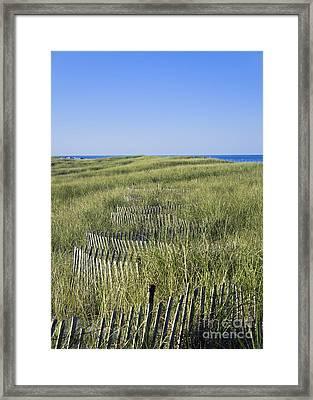 Dune Fence Framed Print by John Greim