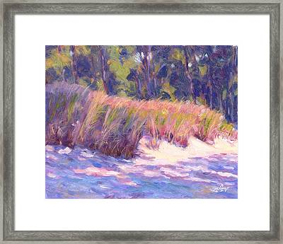 Dune Shadows Framed Print by Michael Camp