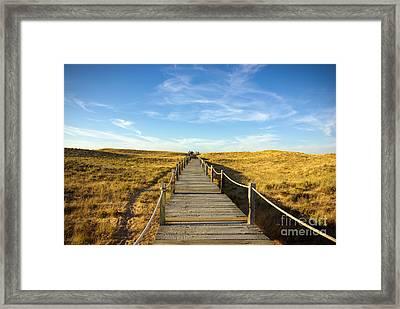 Dune Walkway Framed Print by Carlos Caetano