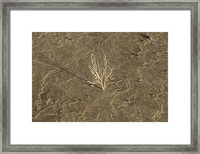Dune Waves Framed Print