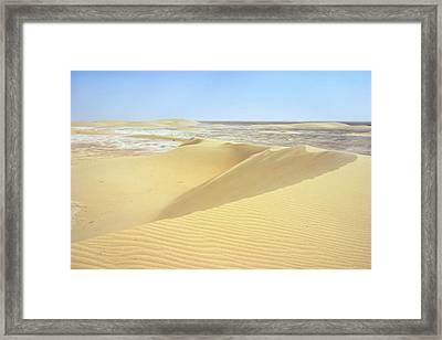 Dunes And Sabkha Framed Print by Paul Cowan