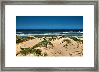 Dunes And The Pacific Framed Print by Steven Ainsworth