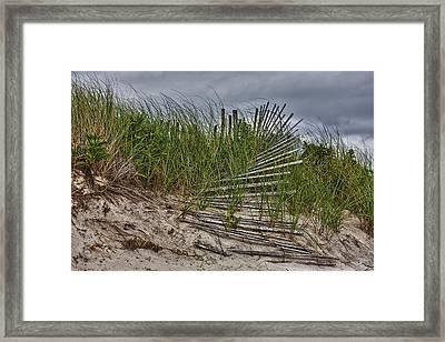 Dunes Framed Print by Rick Berk