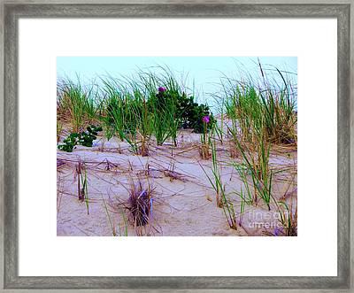 Dunes Framed Print by Susan Carella