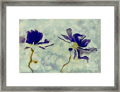 Duo Daisies Framed Print by Variance Collections
