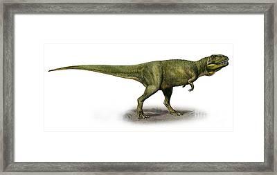 Duriavenator Hesperis, A Prehistoric Framed Print by Sergey Krasovskiy
