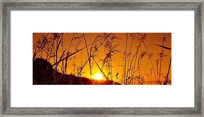 Dusk Pano Framed Print by Svetlana Sewell