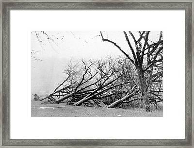 Dust Storm Damage, 1931 Framed Print