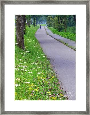Dutch Bicycle Path - Digital Painting Framed Print by Carol Groenen