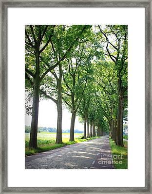 Dutch Country Road Framed Print by Carol Groenen