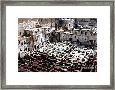 Dyeing Vats Of Fez Framed Print by Steve Goldstrom