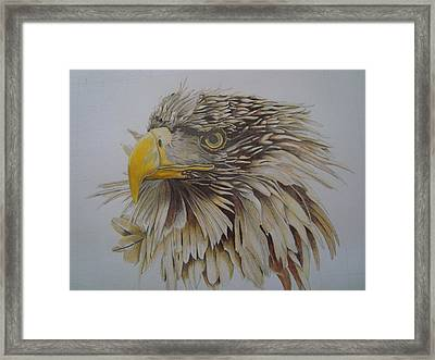 Eagel Framed Print