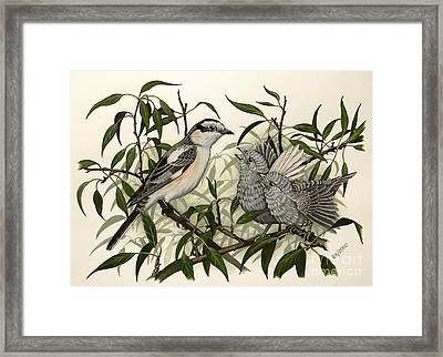 Eager And Happy Framed Print