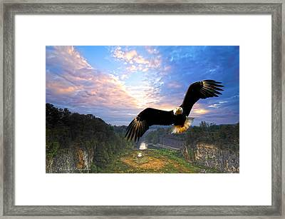 Framed Print featuring the photograph Eagle At Paint Creek Dam by Randall Branham