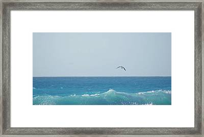 Eagle Flying Over Sea Framed Print by Fabian Jurado's Photography.