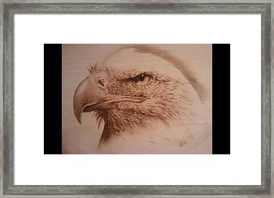 Eagle Framed Print by Rodney Balderas