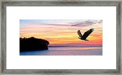 Framed Print featuring the photograph Eagle Sunrise by Randall Branham